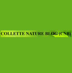COLLETE NATURE BLOG (CNB)