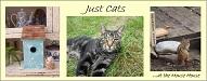 justcats-deb.blogspot